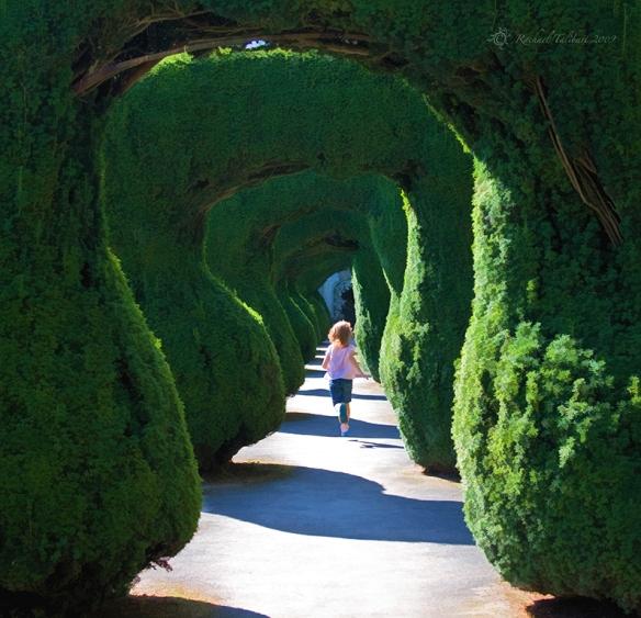 girl running into maze