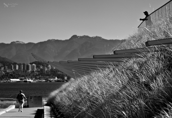 black and white view of Vancouver