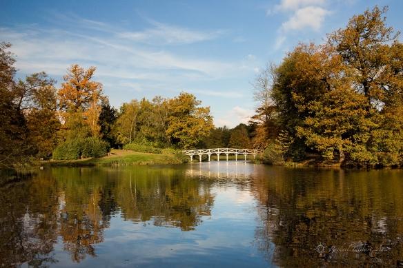 Painshill Park, Surrey