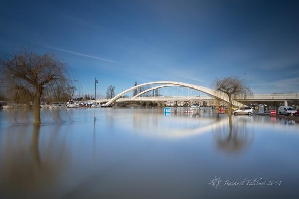 Surrey floods 2014